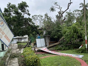 Trees uprooted and signs blown down at CRS office